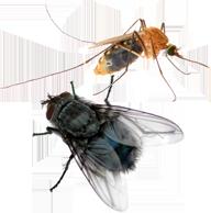 Средства от мух и комаров